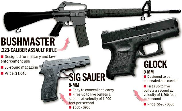 guns used by Newtown shooter